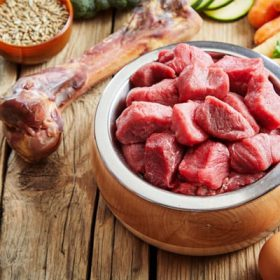 Top 6+ Best Meat Grinders for Raw Dog Food In 2020